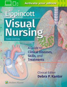 Lippincott Visual Nursing,3/e